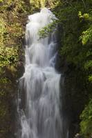 Hawaii, Maui, Hana, A Waterfall Surrounded By Lush