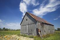 Old Barn, Haldimand County, Niagara Peninsula, Ont