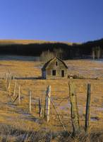 Old Farm, Near Cochrane, Alberta, Canada