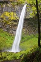 Elowah Falls In Columbia River Gorge National Scen