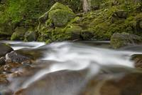 Hawaii, Maui, Iao River Valley, Water In Motion