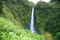 Hawaii, Big Island, Akaka Falls State Park, View O