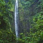 """Hawaii, Maui, Hana, Oheo Gorge, Waimoku Falls, And"" by DesignPics"