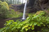 South Silver Falls, Silver Falls State Park, Orego