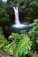 Hawaii, Big Island, Hilo, Rainbow Falls State Park