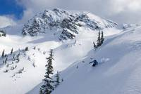 Skier Shredding Powder Below Nak Peak, Cascade Mou