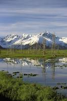 Snow-Capped Kenai Mountains Reflected In Pond, Sou