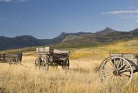Old Wagons, Foothills, Alberta, Canada