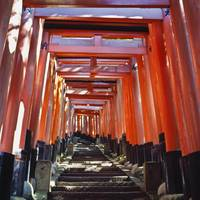 Red Torii Arches Over Steps At Inari Temple