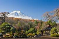 View Of Mount Fuji From A Japanese Garden Yamanas