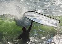 Man In The Water Holding Onto Windsurfing Board, C
