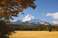 Mount Hood And Autumn Colours In Hood River Valley