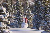Snowman wearing a red scarf and black top hat
