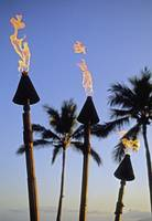 Hawaii, Tiki Torches Lit At Dusk, Palm Trees And B