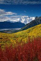Fall Foliage Overlooking Kennicott Glacier SC Alas