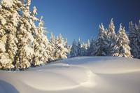 Winter Scene, Mount Hood, Oregon Cascades, Oregon,