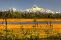 Mt. McKinley At Sunset, Denali National Park, Sout