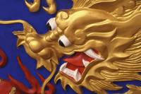 Golden Dragon, Close Up, Hong Kong