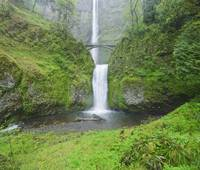 Multnomah Falls In Spring In Columbia River Gorge,