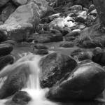 """Mountain Stream Monochrome"" by LarryBohlin"