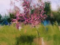Pink Blooming Tree- Spring