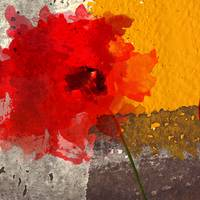 Abstract Red Flower