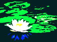 Lotus Flower with Lily Pads II