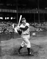 Goose Goslin swinging bat