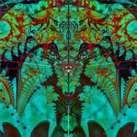 Pheonix by Lisa Rich