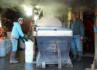 Maple Syrup Production in Upstate, NY