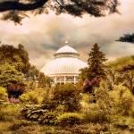 """The Conservatory"" by JessicaJenney"