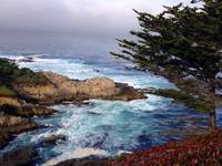 Coastal view from Carmel Highlands