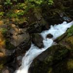 """Sol Duc Falls..."" by patriciaschnepf"