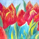 """Red Tulips"" by Lallinda"