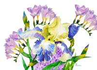 Bouquet with iris and fresia