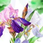 """Green background with white blue  irises"" by piacheva"