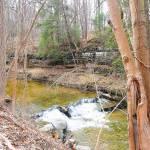 """Small Waterfall on Mill Creek in Lodi, NY"" by FingerLakesPhotos"