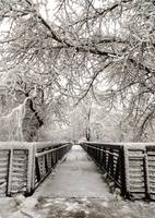Bridge Through Winter
