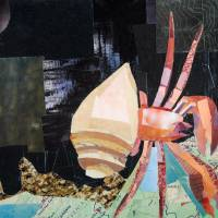 Hermit Crab Art Prints & Posters by Megan Coyle