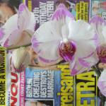 """Phaleonopsis Orchid - White and Pink"" by newimage"