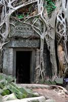 The Doorway at Ta Prohm Cambodia
