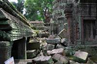 Ruins of Ta Prohm temple Cambodia