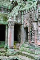Corner of TaProhm Temple Cambodia