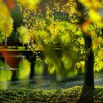 """Spring Pond"" by zenin"