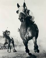 Seabiscuit Horse Racing #3