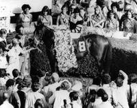 Seattle Slew Horse Racing #04