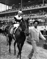 Seattle Slew Horse Racing #08