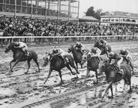 Vintage Horse Racing Muddy Conditions