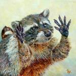 """Raccoon"" by Liliya_Chernaya"