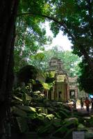 Ta Prohm temple entrance Cambodia